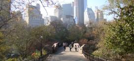 Central Park Love Story